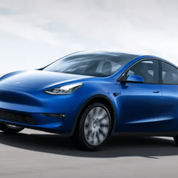 Tesla Model Y Unveiled
