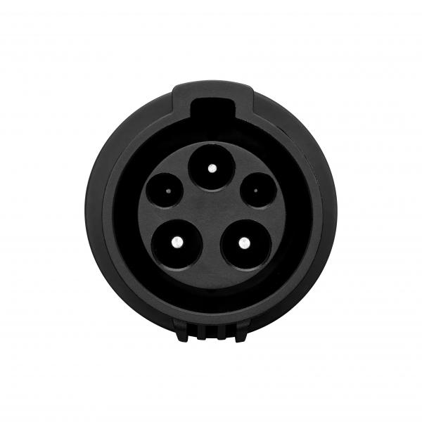 Type 1 male plug